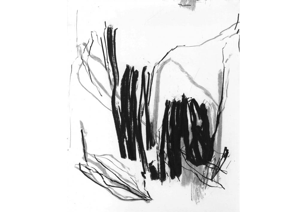 Œuvre au noir 3