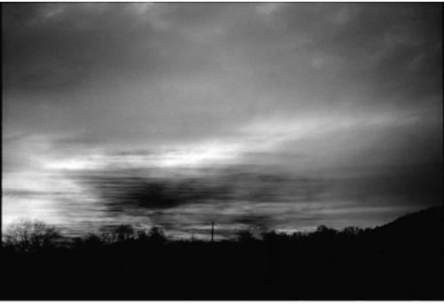 photographie-kenesi-zeuxis
