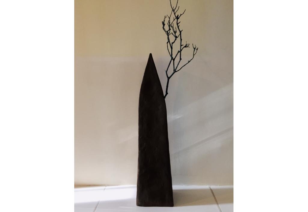 Maison arbre noire