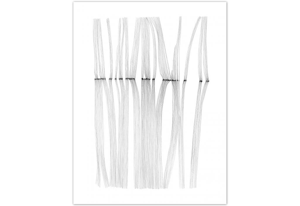 Cosmogonies C15 oeuvre de Fabienne Jousse sur Zeuxis