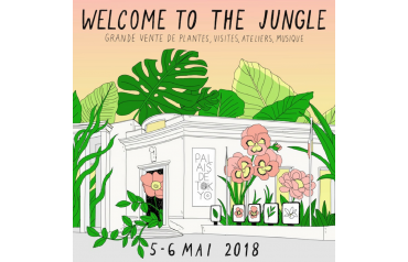 Welcome to the jungle !